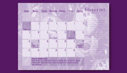 February Calendar back side
