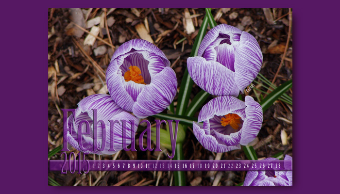 February Calendar front side