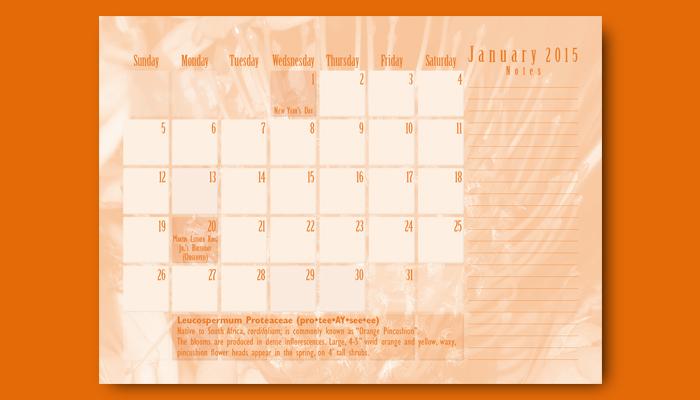 January Calendar back side