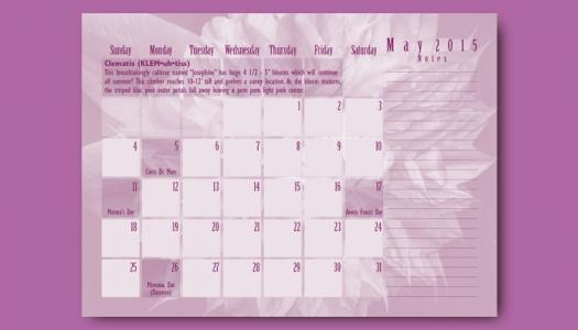 May Calendar back side