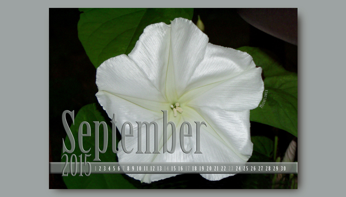 September Calendar front side