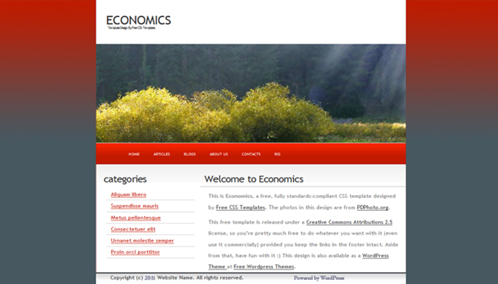 Economics draft mock-up