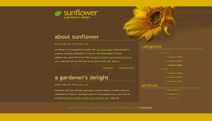 All About Sunflowers draft mock-up